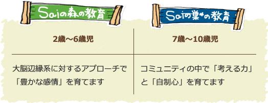イメージ図/Saiの森の教育とSaiの巣の教育-年齢別比較